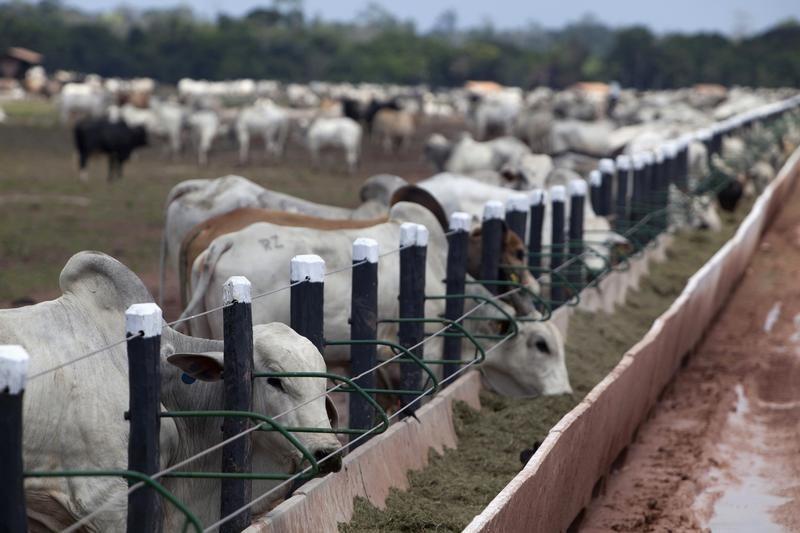 U.S. challenges Canada's dairy tariff-rate quotas