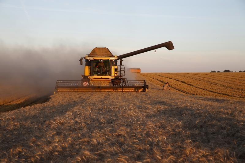 Международный совет по зерну повысил прогноз экспорта пшеницы из РФ в этом сельхозгоду