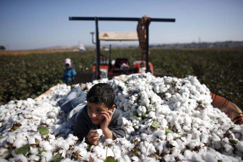 又一個暴漲的大宗商品:美國棉花期貨六連漲,創九年以來高位