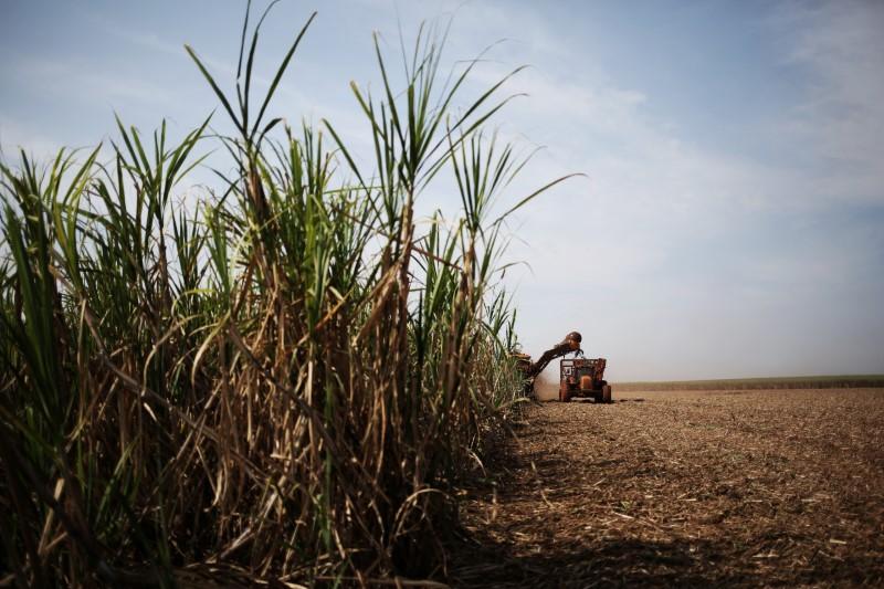 Raízen fecha com Yara 1ª venda de biometano de longo prazo