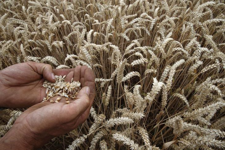 Tarımsal ürünlerin girdi maliyeti 2,5 yılın zirvesine çıktı