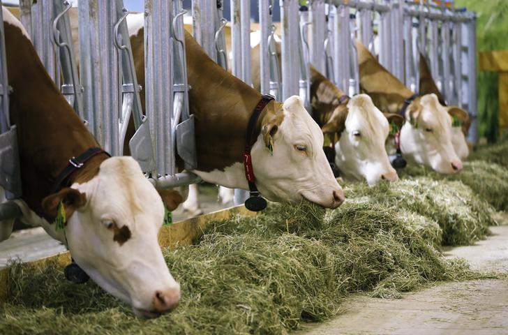 Регионы на 24 декабря перечислили аграриям 92,6% федеральных субсидий