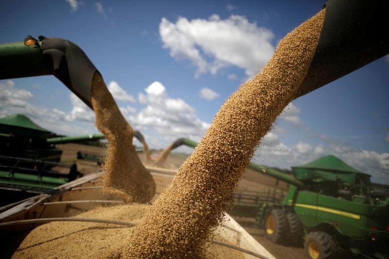 Apex lança programa para divulgação do agro brasileiro no exterior
