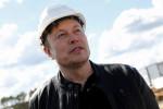 Tesla's Musk signals concerns over Nvidia deal for UK chip maker -The Telegraph