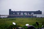 Tesla Shanghai to make 300,000 cars Jan-Sept despite chip shortage - sources