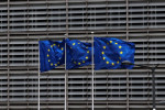 EU eyes tighter rules for 'renewable' biomass energy - draft