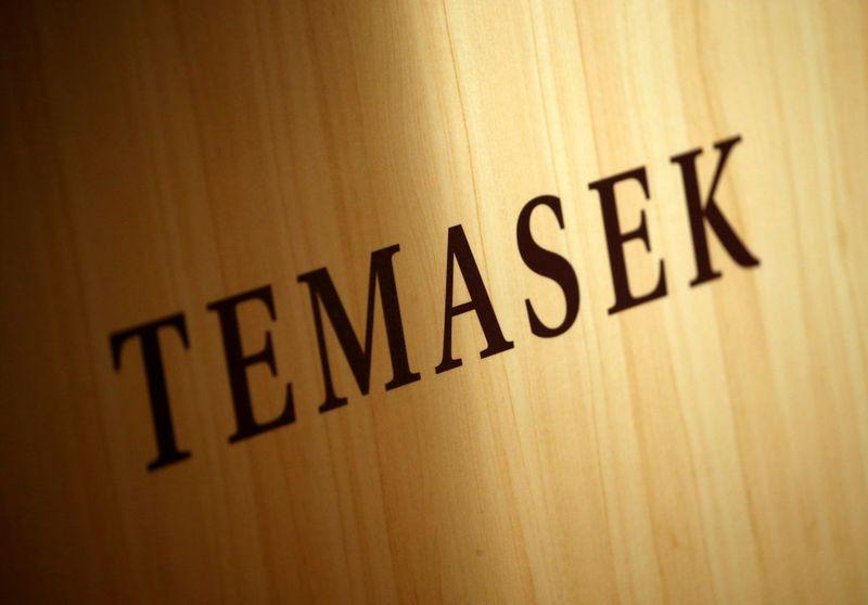 Singapore's Temasek portfolio surges to record after market rally