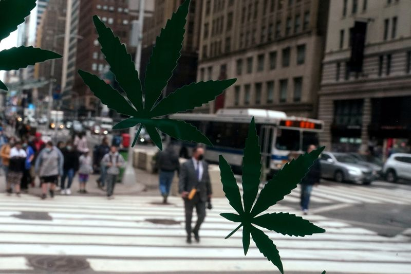 U.S. Senate Democrats roll out draft bill to legalize weed