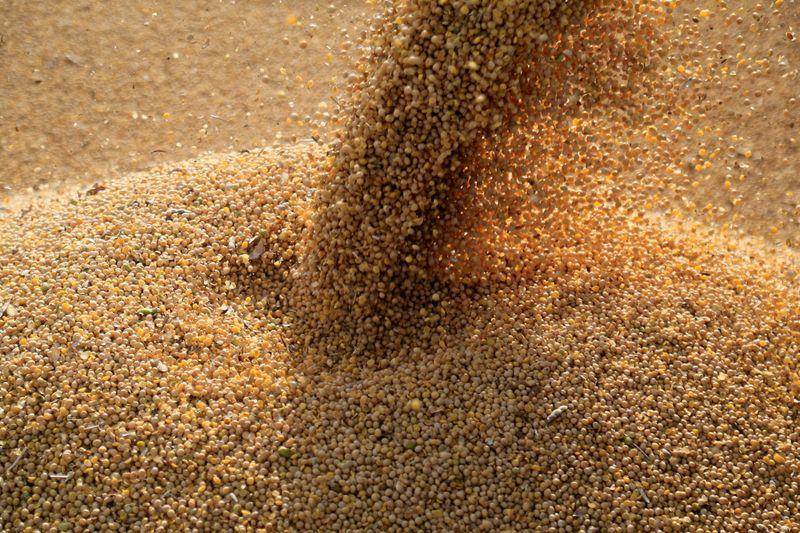 Importação de soja do Brasil pela China recua em junho com redução em margens de esmagamento