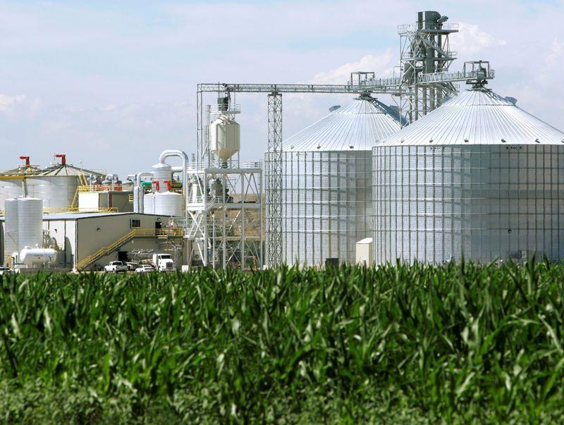 Exclusive-White House delays biofuel mandates due to political concerns -sources