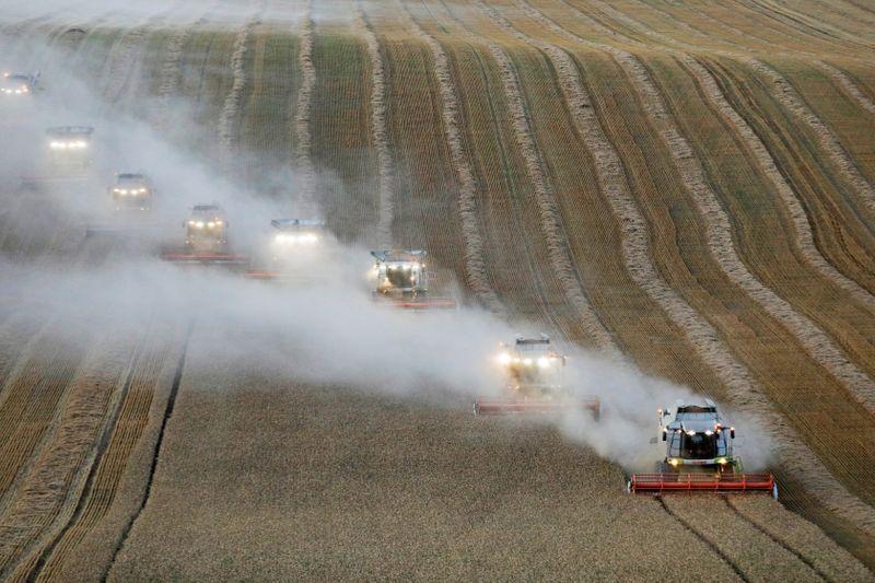 La campaña de Putin para controlar los precios de los alimentos amenaza al sector de los cereales