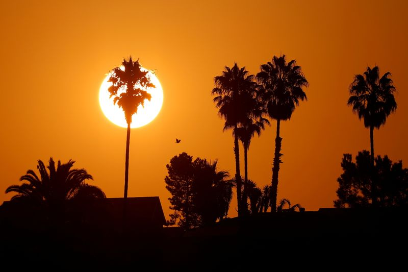 California urges power conservation in heat wave, prices soar