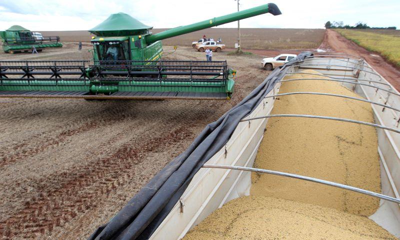 Soja e milho recuam em Chicago por preocupações com macroeconomia e biocombustíveis