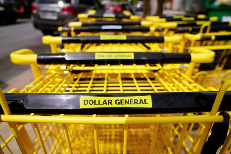 Shipping woes squeeze profits at U.S. dollar stores, shares slip