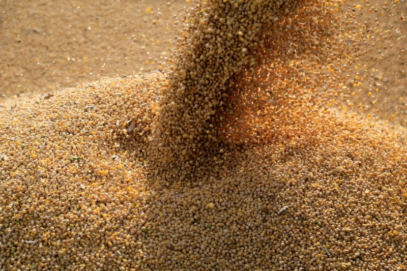 Hurricane Ida damages Louisiana grain terminal, disrupts exports