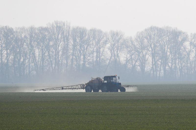 Condiciones favorecen siembra de granos de invierno en Ucrania, dicen meteorólogos