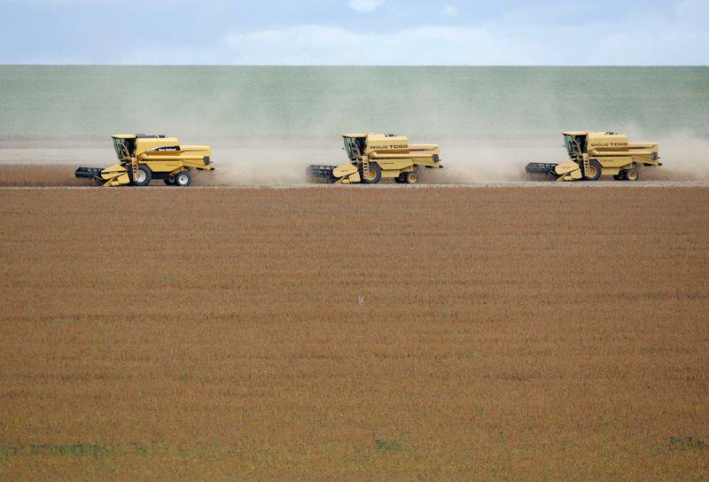BrasilAgro fecha venda de fazenda em MT por R$589 mi, maior acordo já realizado pela empresa