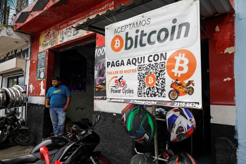 El Salvador to use bitcoin gains to fund veterinary hospital, president  says By Reuters
