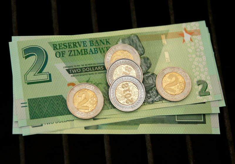 Zimbabwe's biggest business group warns local currency could collapse