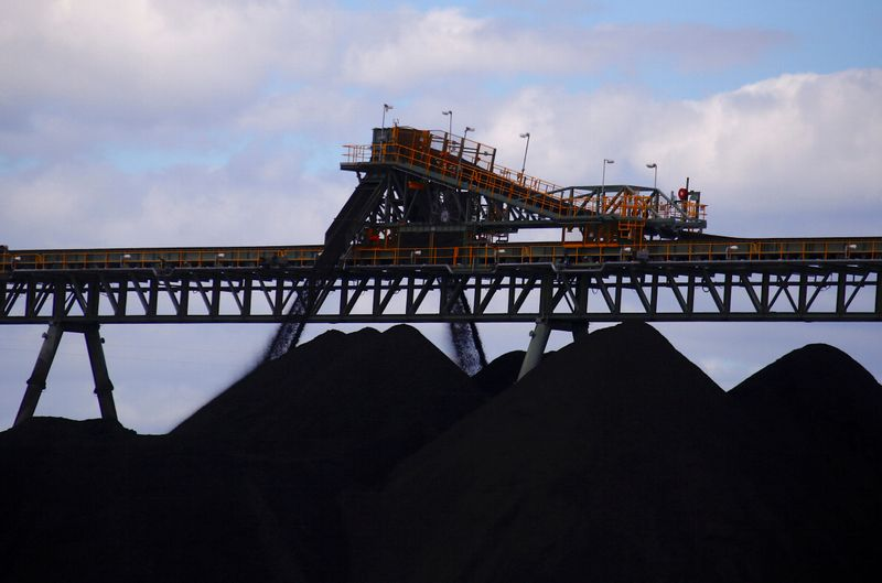 Ideology, not market, driving coal decisions -Australia resources minister