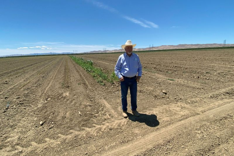 'Big risk': California farmers hit by drought change planting plans