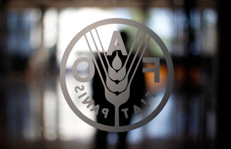 Custo de importação de alimentos em alta no mundo ameaça os mais pobres, diz FAO