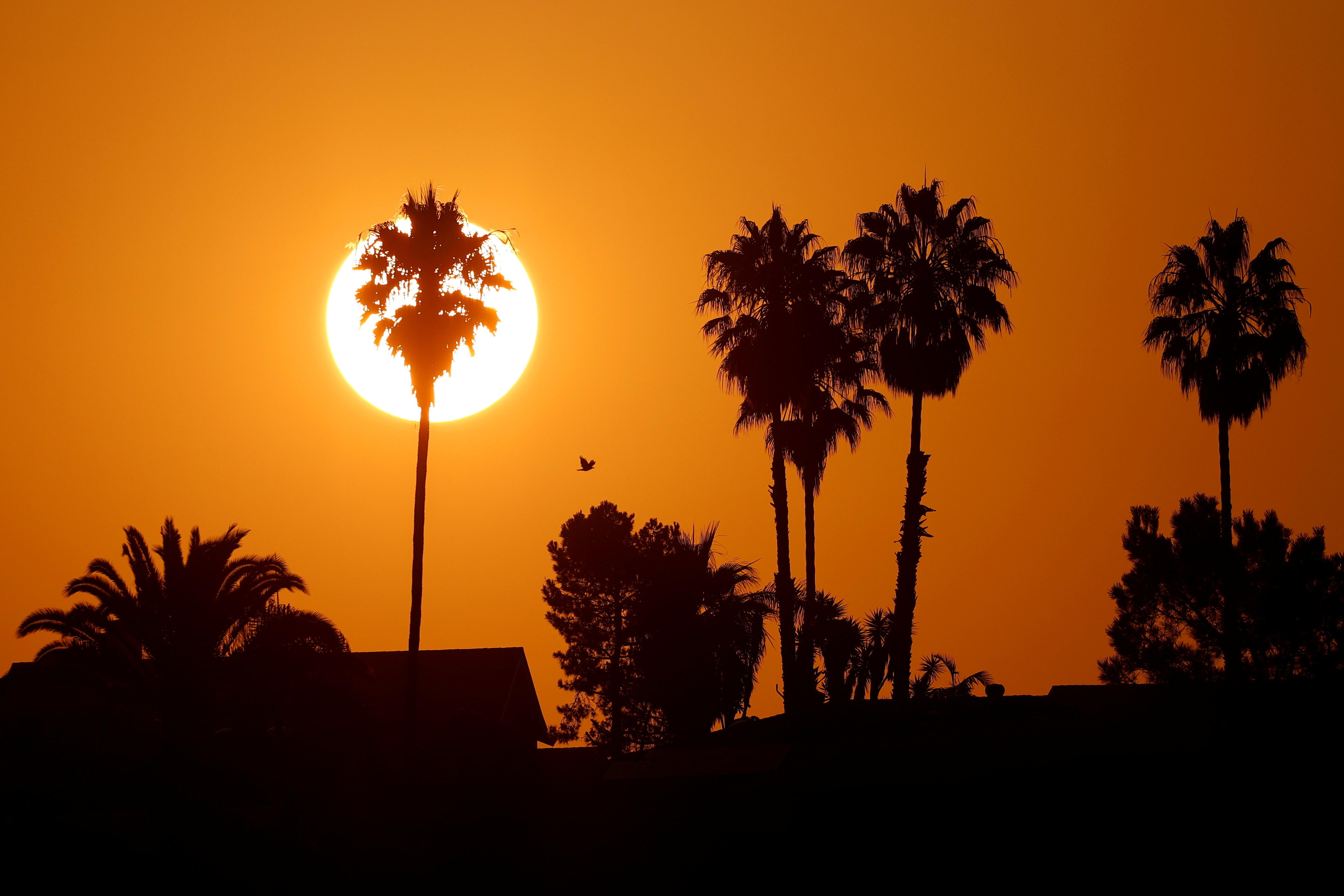 'Apocalyptic' heat wave scorches U.S. Southwest again