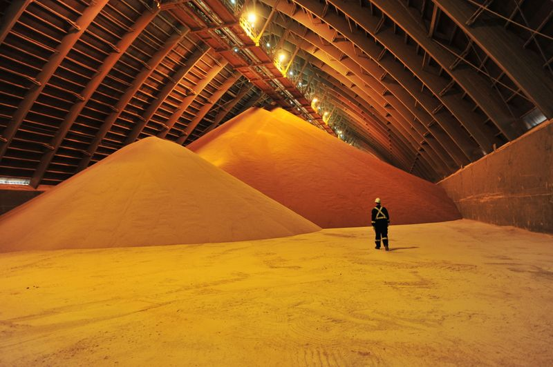 Potash partnership with BHP 'not our focus': Nutrien executive
